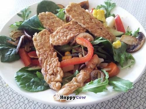 """Photo of Totally Tempeh  by <a href=""""/members/profile/JohnnySensible"""">JohnnySensible</a> <br/>Totally Tempeh - in a Summer salad <br/> November 20, 2013  - <a href='/contact/abuse/image/43453/58805'>Report</a>"""