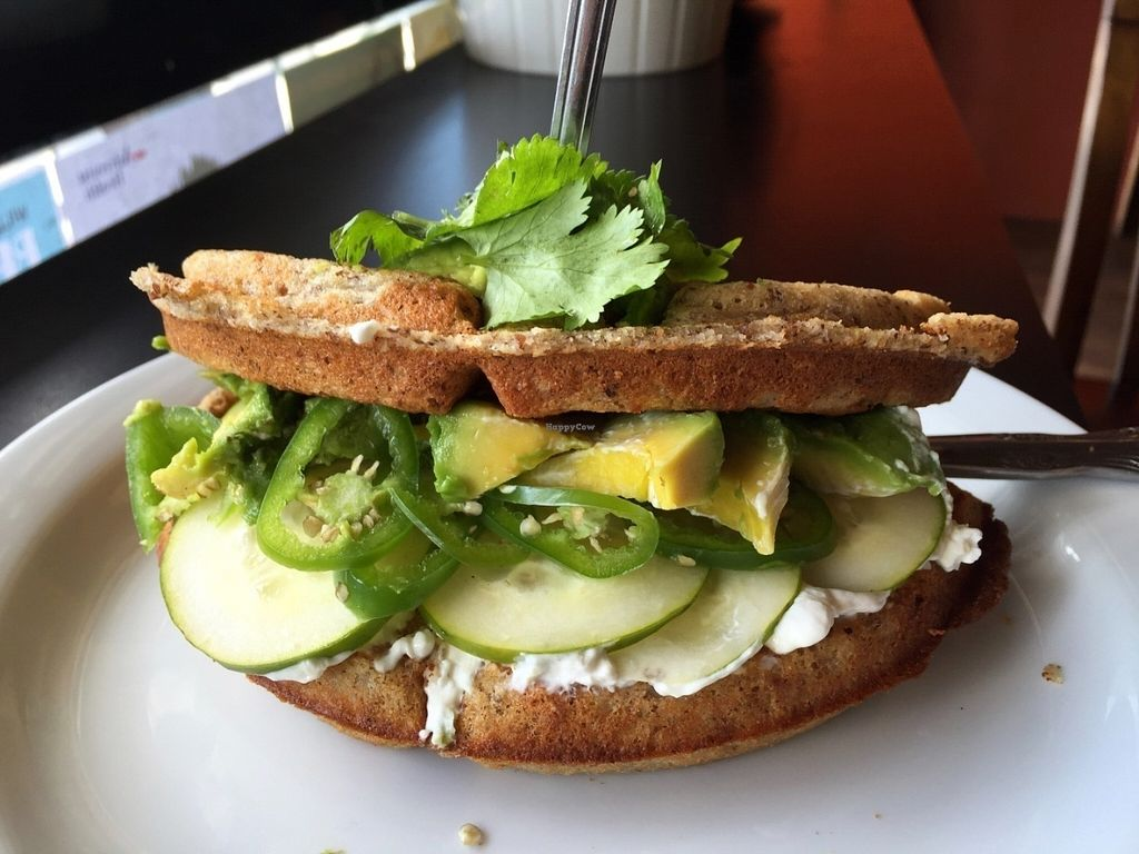 "Photo of Nectar Cafe  by <a href=""/members/profile/burgerabroad"">burgerabroad</a> <br/>jalapeno waffle sandwich  <br/> July 13, 2016  - <a href='/contact/abuse/image/43466/159681'>Report</a>"