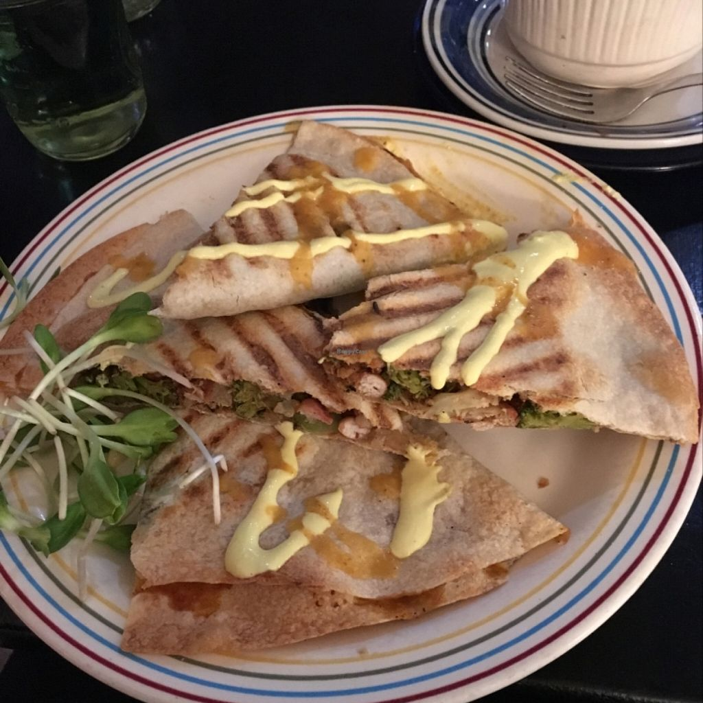 """Photo of Whyld Ass Coffee Shop  by <a href=""""/members/profile/Sarah_veg"""">Sarah_veg</a> <br/>Quesadillas <br/> March 12, 2016  - <a href='/contact/abuse/image/43474/139766'>Report</a>"""