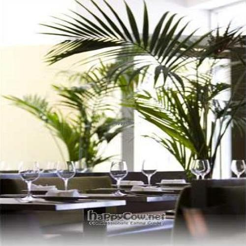 """Photo of CLOSED: Green Zebra  by <a href=""""/members/profile/happycowgirl"""">happycowgirl</a> <br/>inside Green Zebra - nice table settings <br/> November 30, 2008  - <a href='/contact/abuse/image/4348/1288'>Report</a>"""