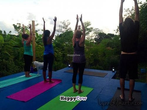 """Photo of Ital Creations - Food Stall  by <a href=""""/members/profile/LynnGilmartin"""">LynnGilmartin</a> <br/>Sunset yoga classes in the middle of the farm <br/> November 30, 2013  - <a href='/contact/abuse/image/43557/59494'>Report</a>"""
