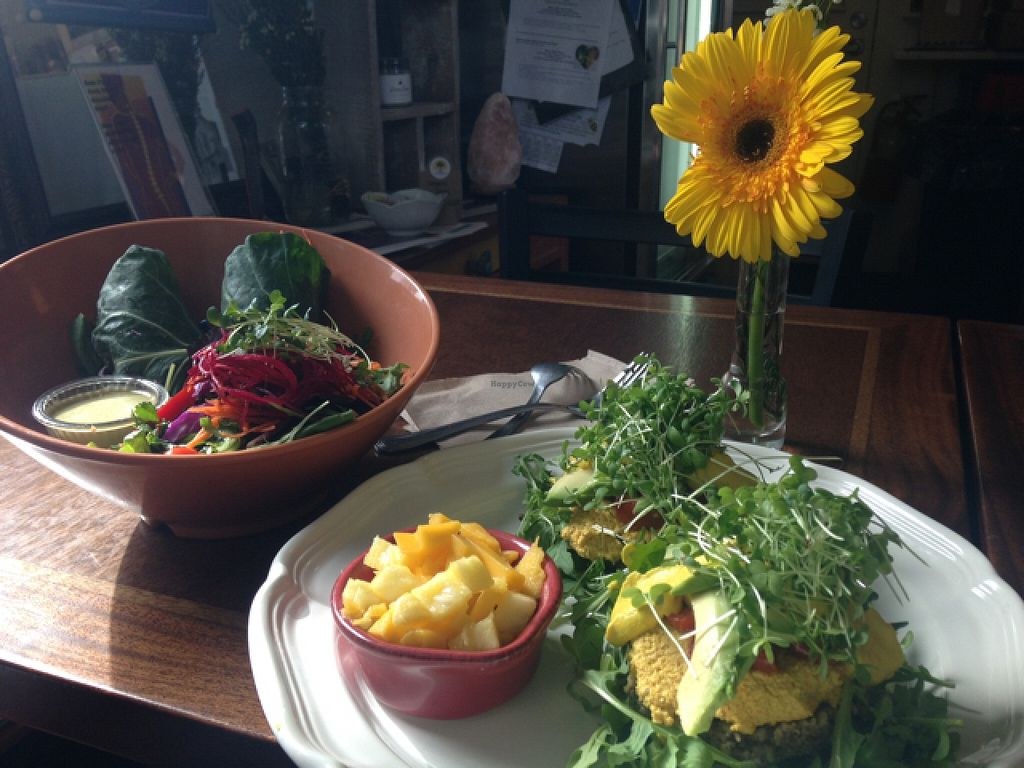 """Photo of Salud Live Kitchen and Juice Bar  by <a href=""""/members/profile/lai.9292"""">lai.9292</a> <br/>island collard and over the moon salad  <br/> March 12, 2016  - <a href='/contact/abuse/image/43575/139753'>Report</a>"""