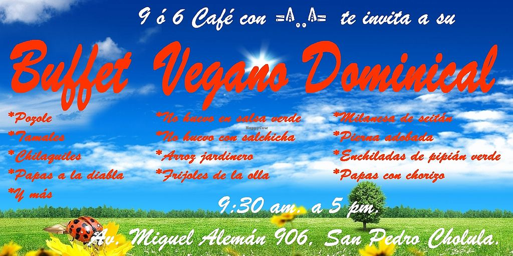 """Photo of 9 or 6 Coffee with Cats  by <a href=""""/members/profile/CharlyCholucleto"""">CharlyCholucleto</a> <br/>Bufet los domingo, para desayunar o comer <br/> May 10, 2018  - <a href='/contact/abuse/image/43601/397565'>Report</a>"""