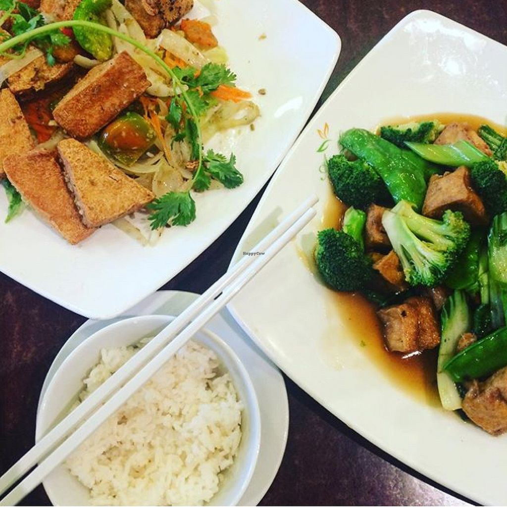 "Photo of Au Lac Royal Vegetarian Cuisine  by <a href=""/members/profile/Carla.Rowe23"">Carla.Rowe23</a> <br/>Dinner  <br/> February 22, 2016  - <a href='/contact/abuse/image/4362/137378'>Report</a>"