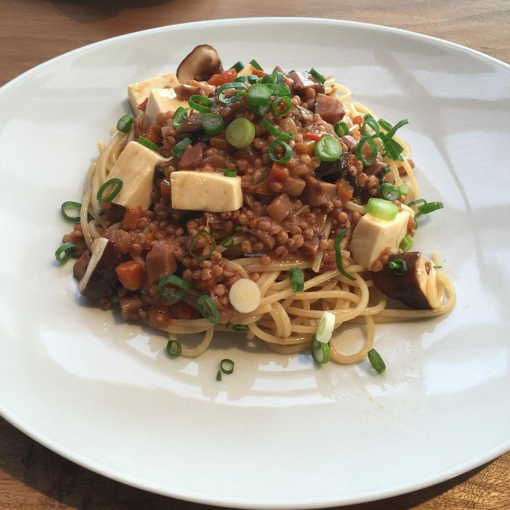 """Photo of Sairam  by <a href=""""/members/profile/NinomaeJyuuichi"""">NinomaeJyuuichi</a> <br/>Mabo tofu sorghum pasta (bland and tasteless) <br/> April 9, 2015  - <a href='/contact/abuse/image/43697/98468'>Report</a>"""
