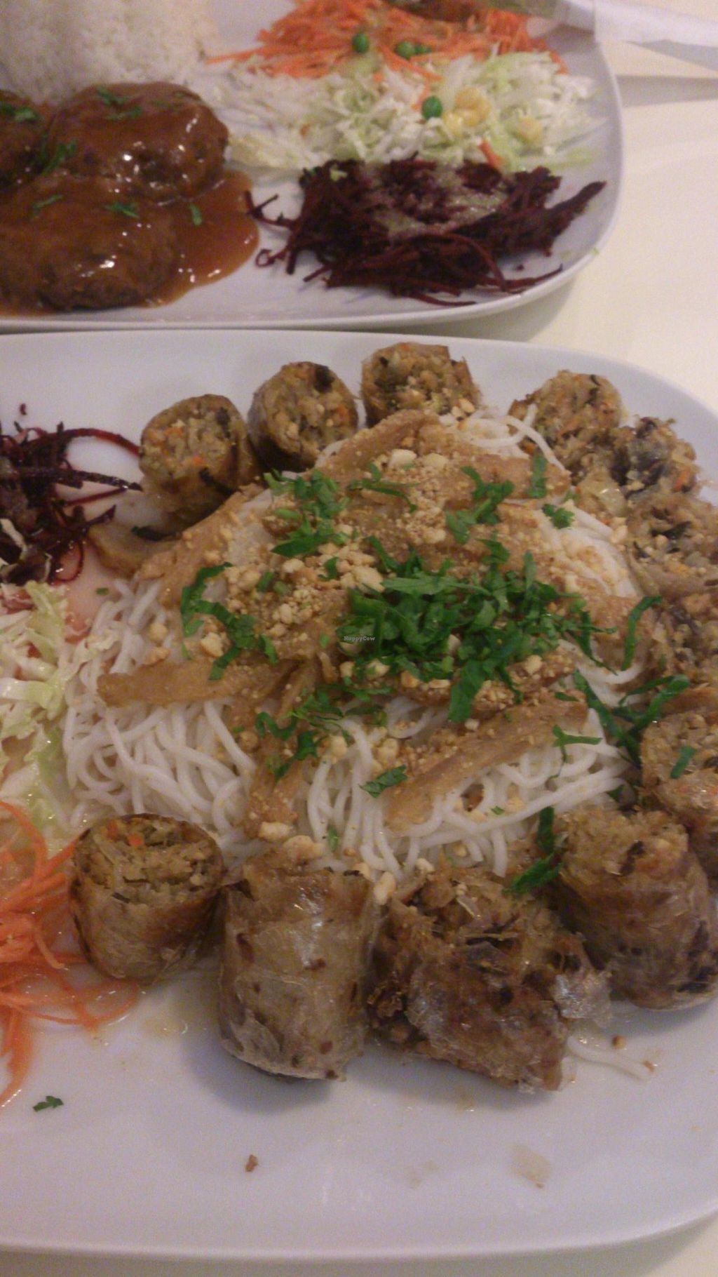 """Photo of Loving Hut - Warynskiego  by <a href=""""/members/profile/werkat"""">werkat</a> <br/>Bun cha gio, above- Vegan balls <br/> November 4, 2014  - <a href='/contact/abuse/image/43710/84624'>Report</a>"""