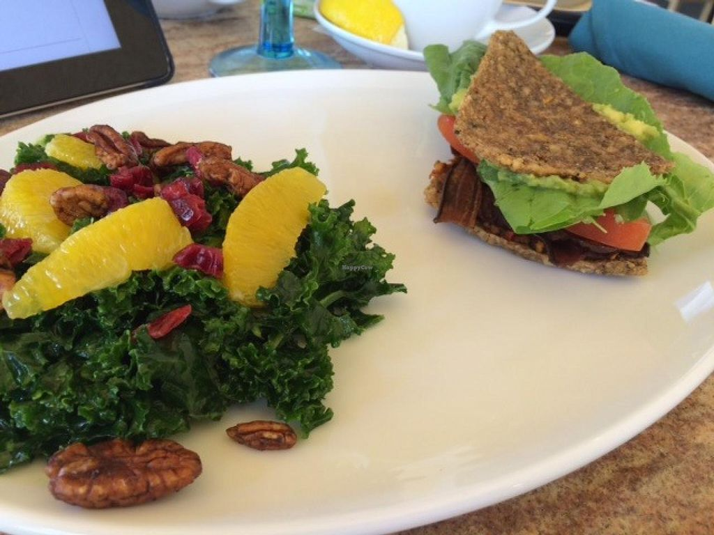 "Photo of CLOSED: The Cider Press Cafe  by <a href=""/members/profile/Lcountertop"">Lcountertop</a> <br/>kale side salad <br/> April 1, 2015  - <a href='/contact/abuse/image/43719/97564'>Report</a>"