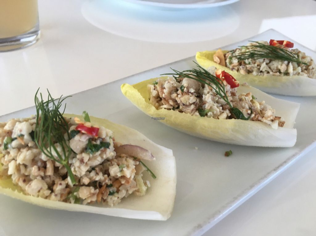 """Photo of Satdha Kitchen  by <a href=""""/members/profile/sriblet"""">sriblet</a> <br/>Endive cups with cashew """"tuna"""" <br/> August 19, 2016  - <a href='/contact/abuse/image/43755/170154'>Report</a>"""