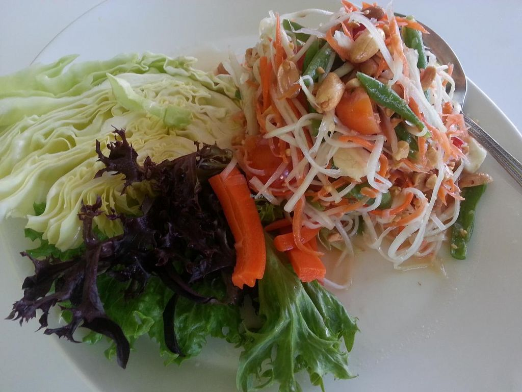 """Photo of Satdha Kitchen  by <a href=""""/members/profile/eric"""">eric</a> <br/>papaya salad <br/> January 11, 2014  - <a href='/contact/abuse/image/43755/62306'>Report</a>"""