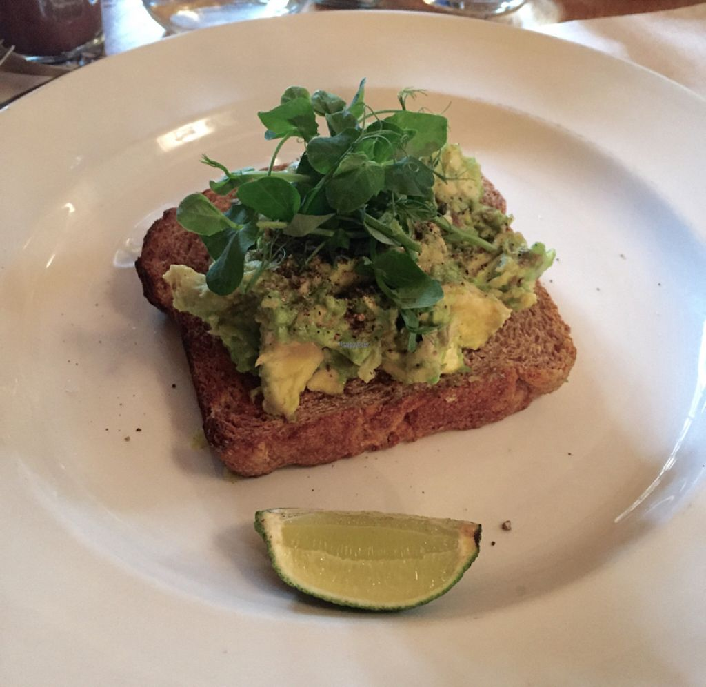 "Photo of Wild Thyme  by <a href=""/members/profile/SofiaWigren"">SofiaWigren</a> <br/>avo toast <br/> November 4, 2016  - <a href='/contact/abuse/image/43777/186596'>Report</a>"