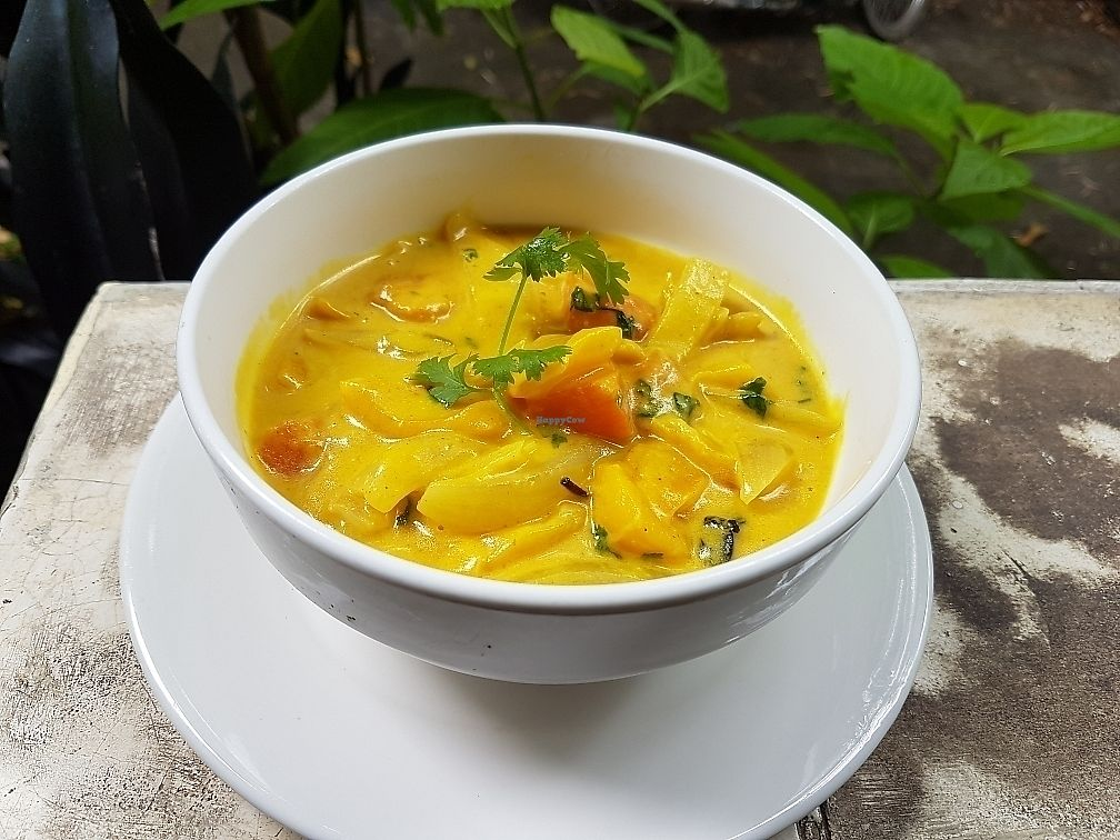 """Photo of The Corn  by <a href=""""/members/profile/jimnoc"""">jimnoc</a> <br/>jackfruit coconut curry <br/> October 23, 2017  - <a href='/contact/abuse/image/43847/317936'>Report</a>"""