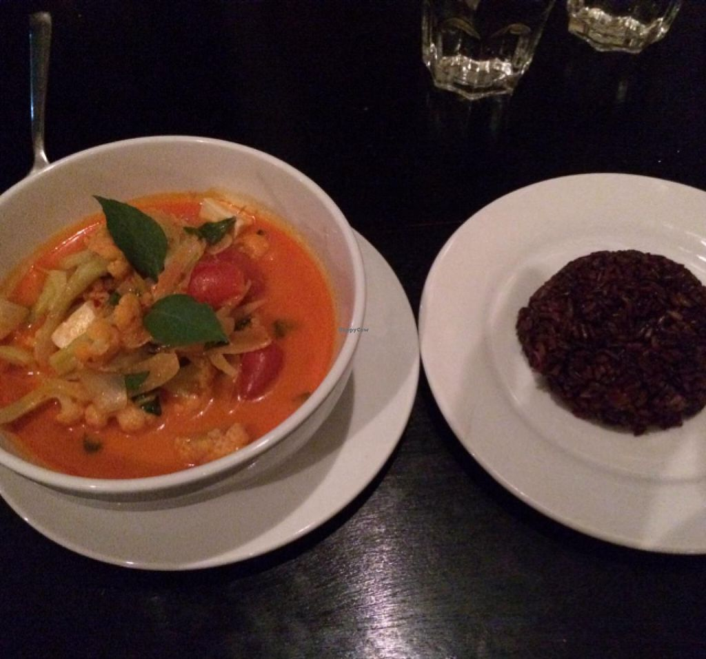 """Photo of The Corn  by <a href=""""/members/profile/blackrabbit"""">blackrabbit</a> <br/>Tom Yum Curry with wild rice <br/> February 1, 2014  - <a href='/contact/abuse/image/43847/63506'>Report</a>"""