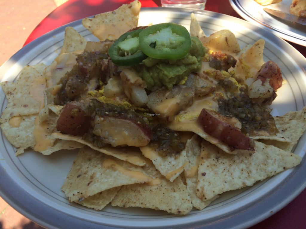 "Photo of Glory Doughnuts  by <a href=""/members/profile/annabazoo"">annabazoo</a> <br/>breakfast nachos <br/> June 12, 2016  - <a href='/contact/abuse/image/43952/153655'>Report</a>"