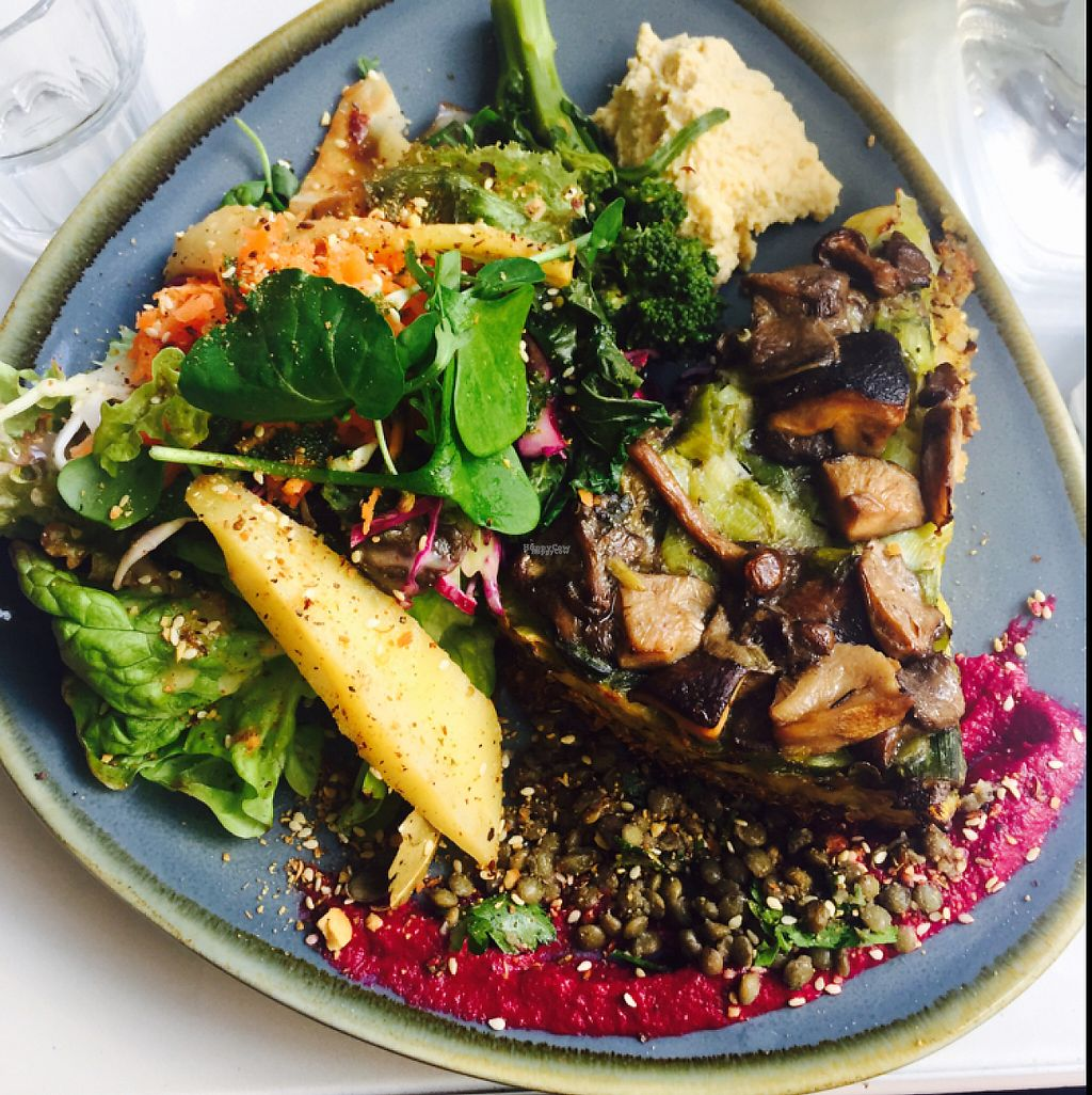 """Photo of The Light House  by <a href=""""/members/profile/FionaPaine"""">FionaPaine</a> <br/>mushroom + leek pie with herbed cashew cheese + quinoa crust, roasted broccolini + parsnip, carrot salad + hummus  <br/> March 15, 2017  - <a href='/contact/abuse/image/43959/236683'>Report</a>"""