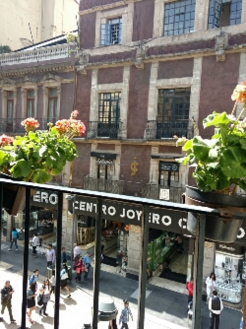 """Photo of Los Vegetarianos  by <a href=""""/members/profile/msangeliic"""">msangeliic</a> <br/>view from restaurant window <br/> April 12, 2016  - <a href='/contact/abuse/image/44019/144282'>Report</a>"""