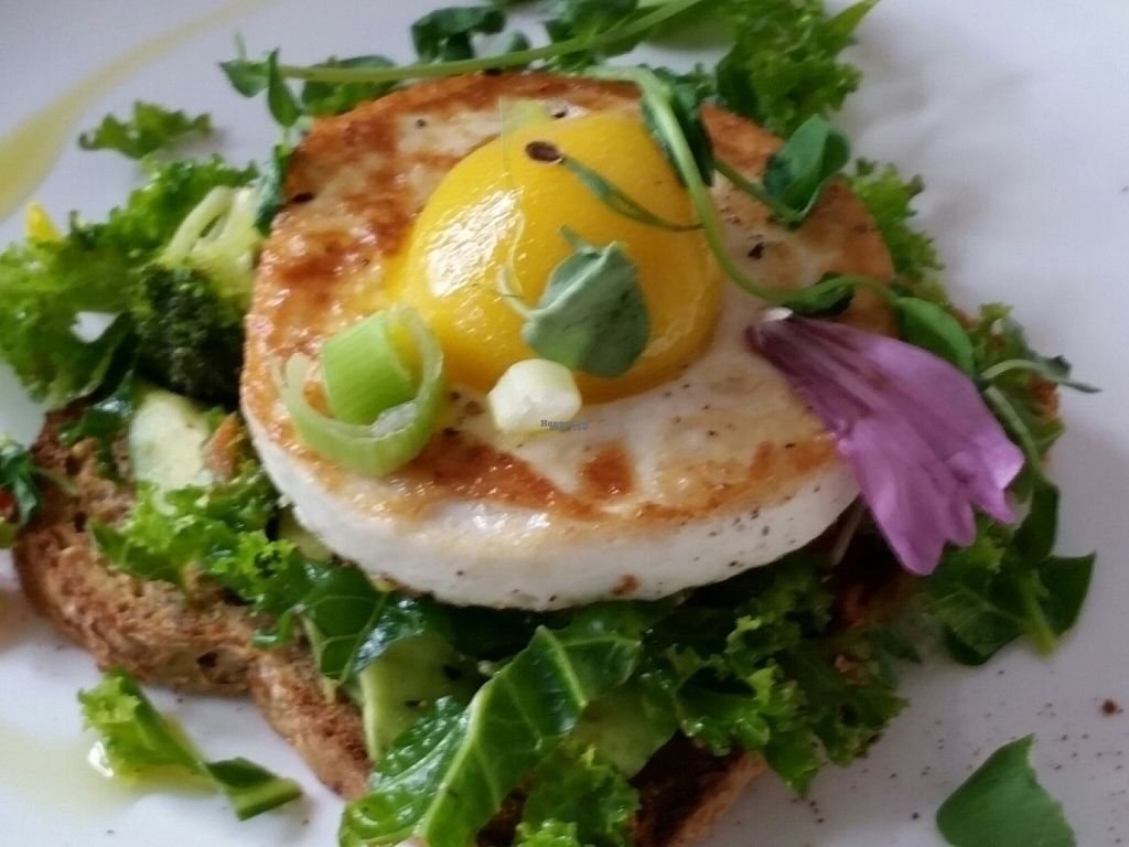 """Photo of CLOSED: Doug McNish Public Kitchen  by <a href=""""/members/profile/eric"""">eric</a> <br/>avocado toast with vegan egg <br/> August 14, 2016  - <a href='/contact/abuse/image/44052/168554'>Report</a>"""