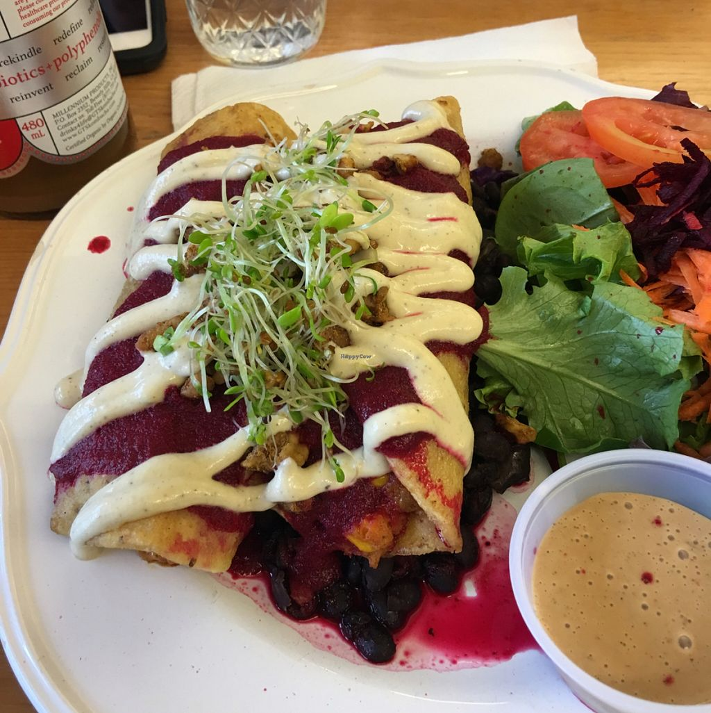 """Photo of 24 Carrots  by <a href=""""/members/profile/Cindy%20Sue"""">Cindy Sue</a> <br/>outstanding enchiladas <br/> March 5, 2016  - <a href='/contact/abuse/image/44118/138933'>Report</a>"""