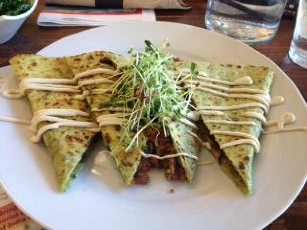 """Photo of 24 Carrots  by <a href=""""/members/profile/Lbatton"""">Lbatton</a> <br/>BBQ Lentil Quesadilla <br/> July 21, 2014  - <a href='/contact/abuse/image/44118/74627'>Report</a>"""