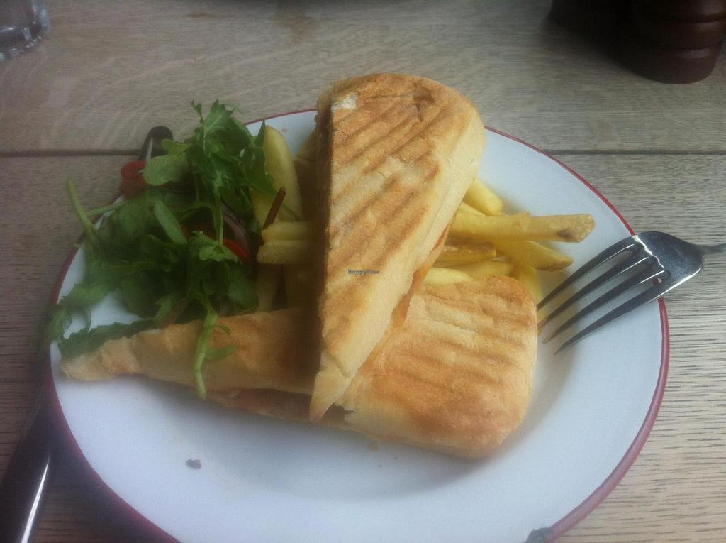 """Photo of The Cosy Club  by <a href=""""/members/profile/Littlething"""">Littlething</a> <br/>Vegan panini served with skin-on fries and house salad <br/> September 10, 2014  - <a href='/contact/abuse/image/44123/79506'>Report</a>"""