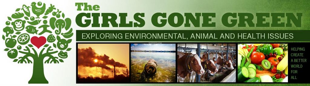 """Photo of The Girls Gone Green  by <a href=""""/members/profile/JulieWatkins"""">JulieWatkins</a> <br/>Exploring Environmental, Animal and Health Issues <br/> December 27, 2013  - <a href='/contact/abuse/image/44277/61035'>Report</a>"""