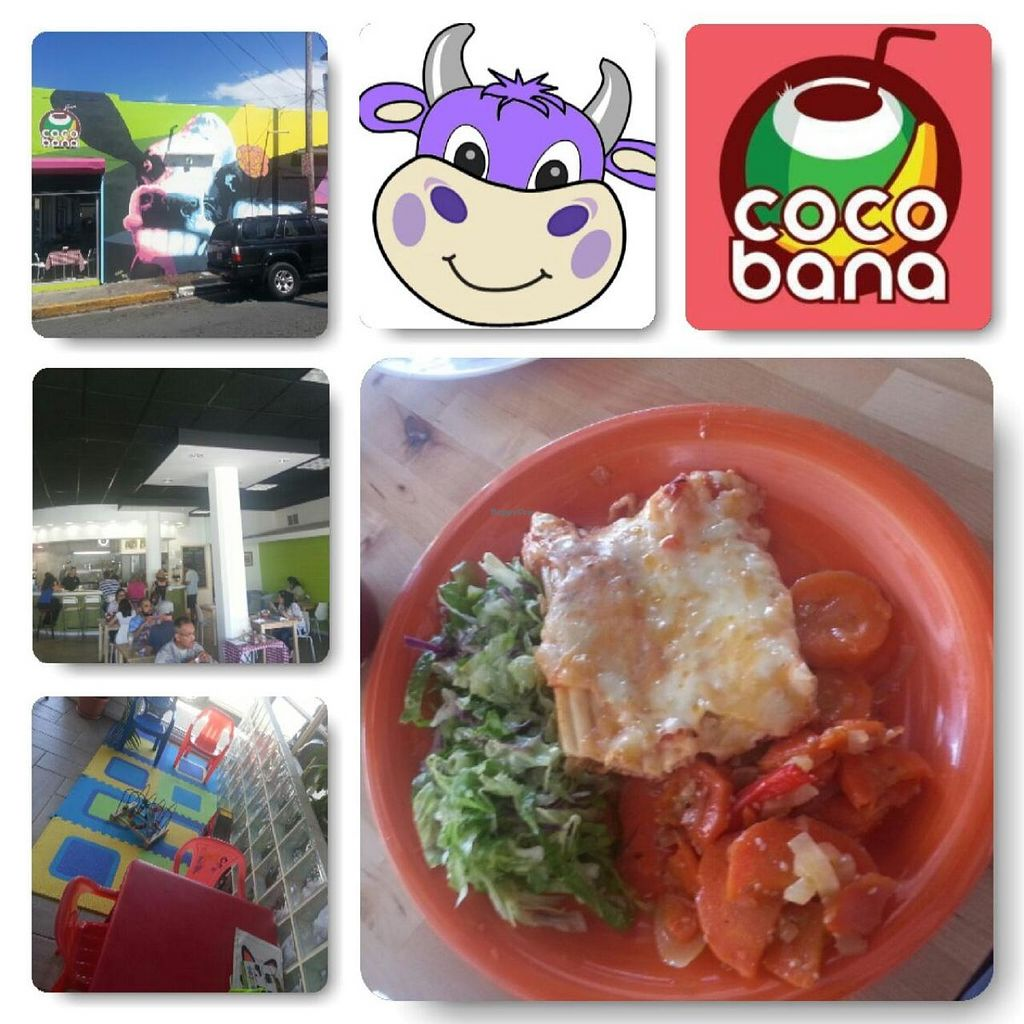 """Photo of Cocobana Restaurante Vegetariano  by <a href=""""/members/profile/DaKingSon"""">DaKingSon</a> <br/>This is what you should expect on arriving to the restaurant. Enjoyable all together <br/> April 28, 2014  - <a href='/contact/abuse/image/44338/68897'>Report</a>"""