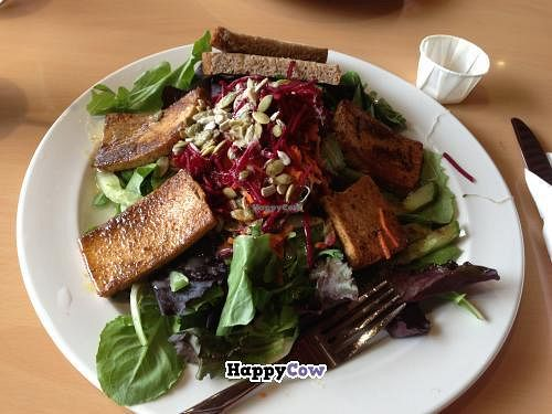 """Photo of Sejuiced  by <a href=""""/members/profile/lovela5"""">lovela5</a> <br/>Mega Protein Salad <br/> September 14, 2013  - <a href='/contact/abuse/image/4451/54881'>Report</a>"""