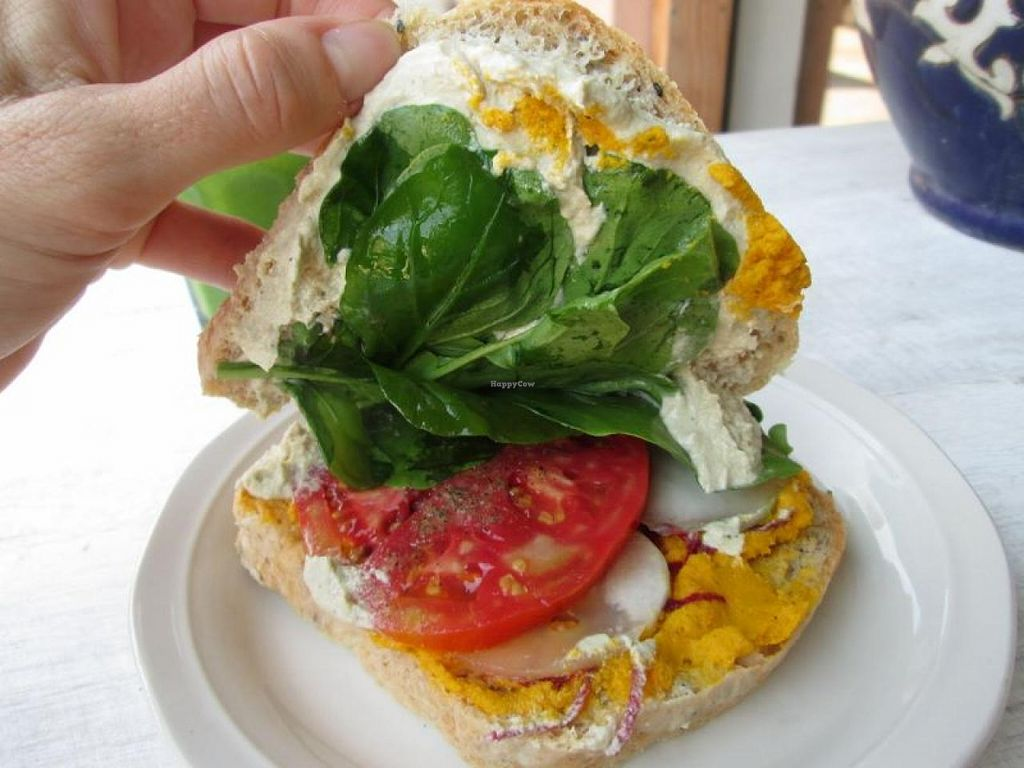 """Photo of Mercado Verde  by <a href=""""/members/profile/choogirl"""">choogirl</a> <br/>Vegan sandwich <br/> February 8, 2014  - <a href='/contact/abuse/image/44537/63949'>Report</a>"""