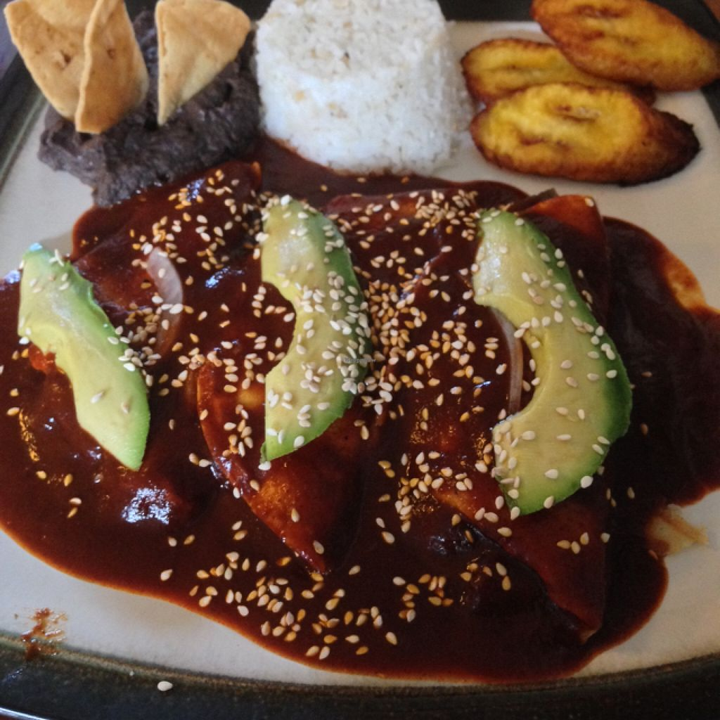 """Photo of Te Quiero Verde  by <a href=""""/members/profile/MarlenaRoz"""">MarlenaRoz</a> <br/>enmoladas with rice, plantains and beans  <br/> April 8, 2016  - <a href='/contact/abuse/image/44547/143494'>Report</a>"""