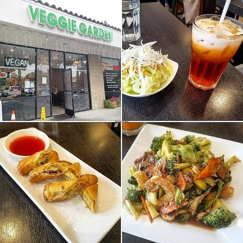 """Photo of Veggie Garden  by <a href=""""/members/profile/jkampmeier"""">jkampmeier</a> <br/>Thai iced tea, spring rolls, and happy family entrée. All Delicious!  <br/> June 9, 2017  - <a href='/contact/abuse/image/44607/267183'>Report</a>"""