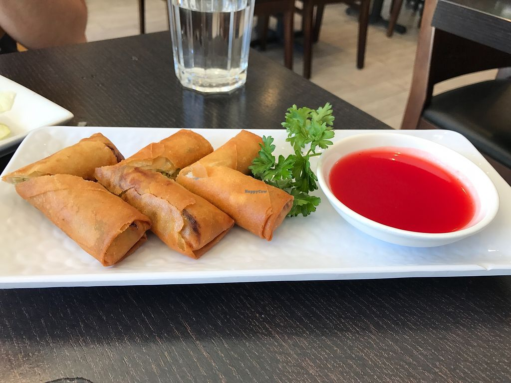 """Photo of Veggie Garden  by <a href=""""/members/profile/StarshineM"""">StarshineM</a> <br/>Spring Rolls w/ Sweet and Sour Sauce  <br/> August 14, 2017  - <a href='/contact/abuse/image/44607/292526'>Report</a>"""