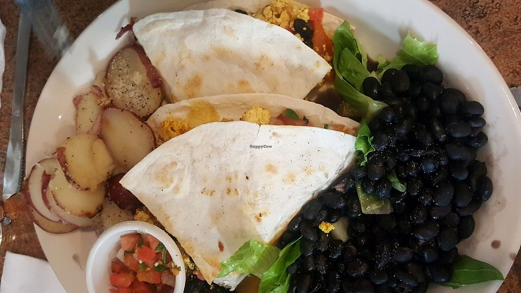 "Photo of Johnny Mango World Cafe and Bar  by <a href=""/members/profile/Tots"">Tots</a> <br/>brunch quesadilla made with tofu scramble <br/> November 27, 2017  - <a href='/contact/abuse/image/44642/329751'>Report</a>"