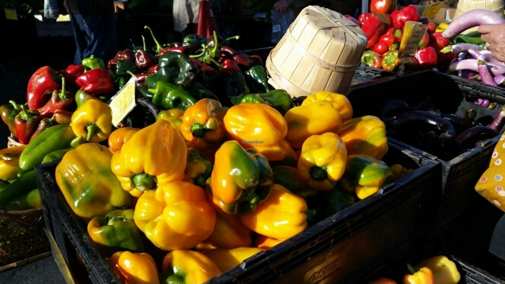 "Photo of Downtown Farmers' Market  by <a href=""/members/profile/Conniemm"">Conniemm</a> <br/>11/18/15 <br/> November 18, 2015  - <a href='/contact/abuse/image/44771/125442'>Report</a>"