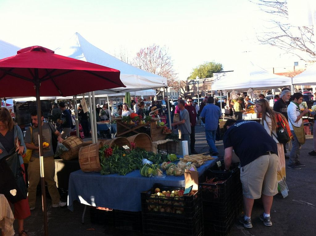 "Photo of Downtown Farmers' Market  by <a href=""/members/profile/H"">H</a> <br/>farmer's market <br/> January 23, 2014  - <a href='/contact/abuse/image/44771/63019'>Report</a>"
