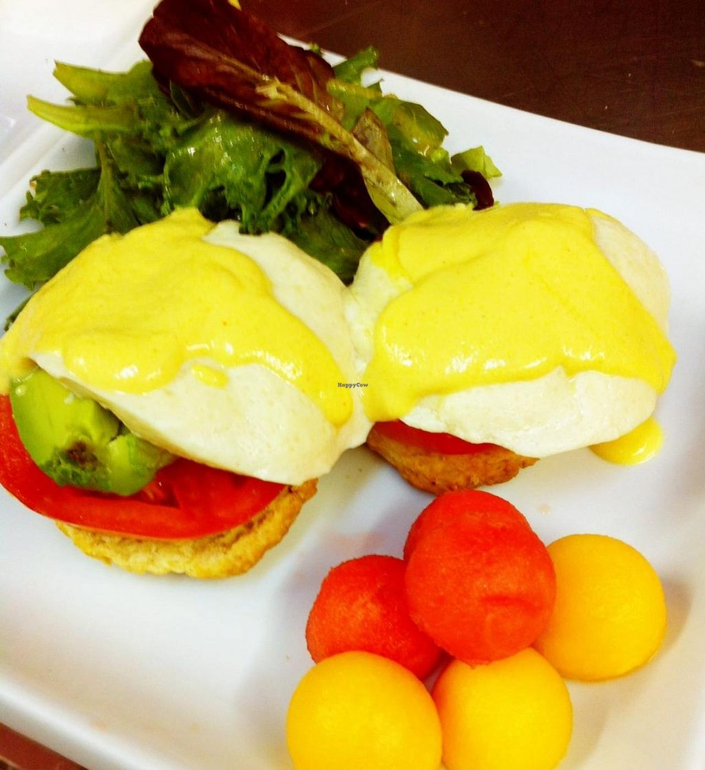 """Photo of CLOSED: The Steady  by <a href=""""/members/profile/thesteady"""">thesteady</a> <br/>Vegan Eggs Benny <br/> January 19, 2014  - <a href='/contact/abuse/image/44803/62784'>Report</a>"""