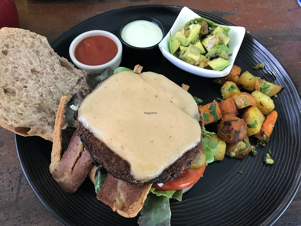 """Photo of Green Gallery  by <a href=""""/members/profile/AllieK."""">AllieK.</a> <br/>Vegan  cheeseburger with added bacon and avacado  <br/> March 19, 2018  - <a href='/contact/abuse/image/44811/372884'>Report</a>"""
