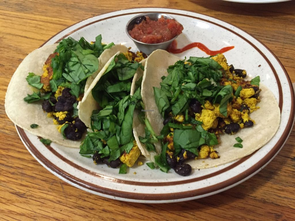 """Photo of The Sentient Bean  by <a href=""""/members/profile/clovely.vegan"""">clovely.vegan</a> <br/>vegan breakfast tacos.  <br/> November 1, 2015  - <a href='/contact/abuse/image/4486/123410'>Report</a>"""
