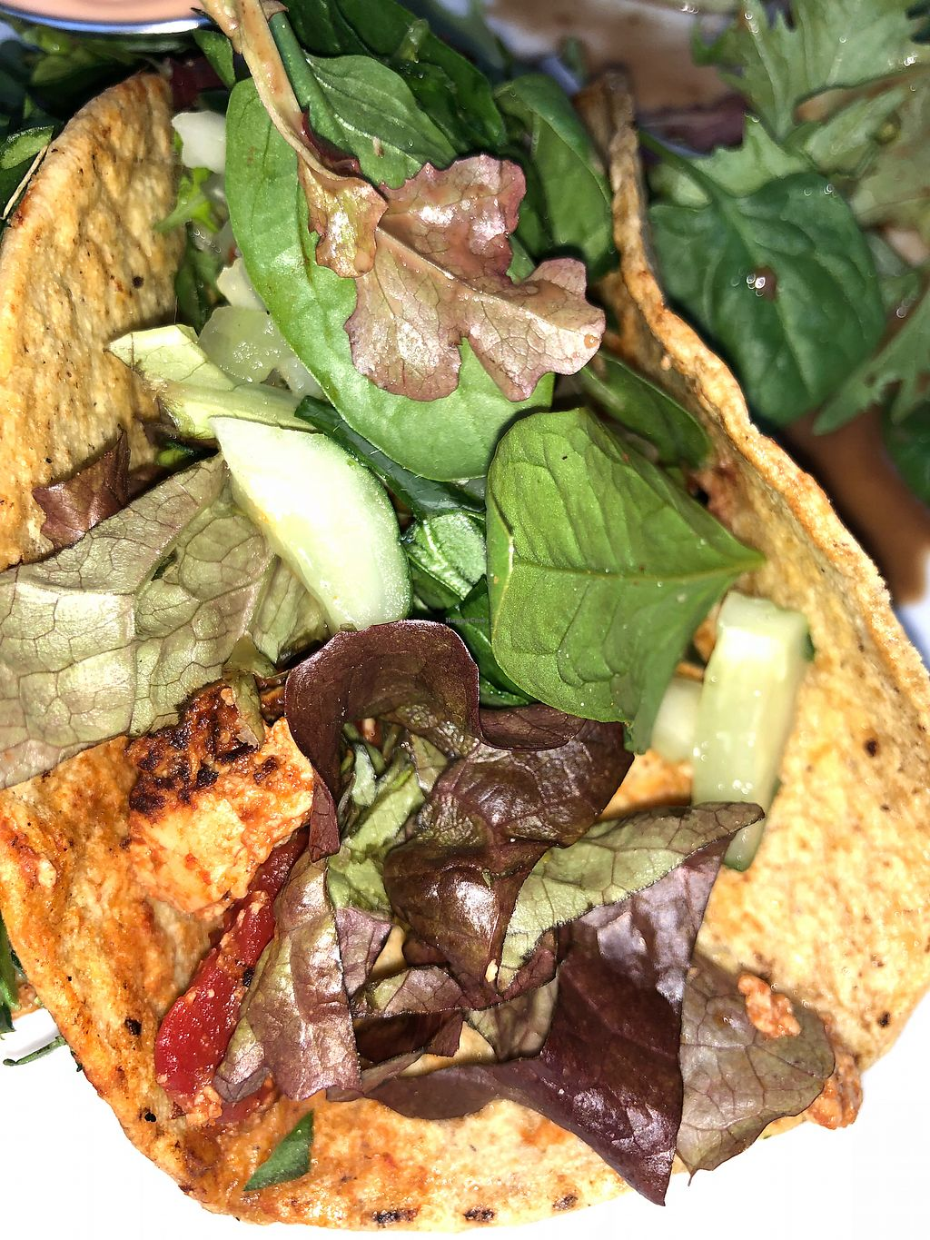 """Photo of The Sentient Bean  by <a href=""""/members/profile/daroff"""">daroff</a> <br/>BBQ Tofu Tacos <br/> December 22, 2017  - <a href='/contact/abuse/image/4486/338172'>Report</a>"""