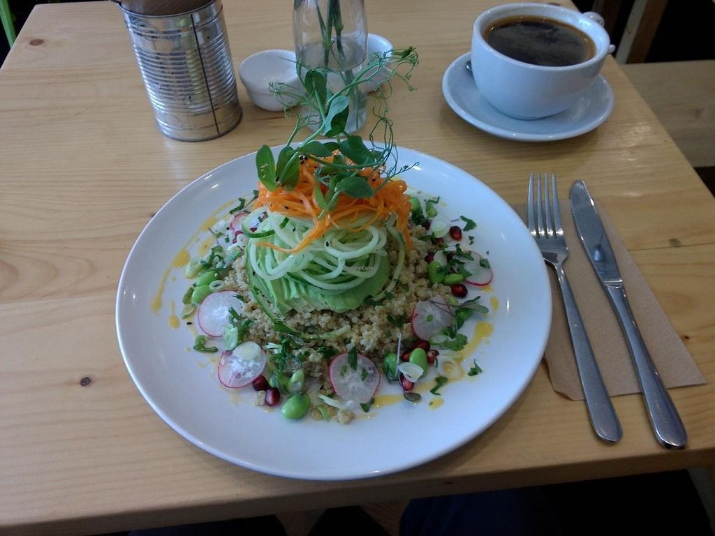 "Photo of CLOSED: Wildebeest  by <a href=""/members/profile/Ryecatcher"">Ryecatcher</a> <br/>Quinoa with avocado and other vegetable stuff <br/> June 21, 2015  - <a href='/contact/abuse/image/44906/106717'>Report</a>"