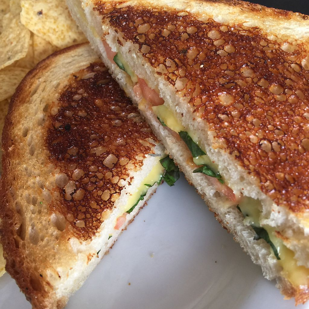 "Photo of Ahimsa Vegan Cafe  by <a href=""/members/profile/ReneeNButtercup"">ReneeNButtercup</a> <br/>grilled cheese with tomato and basil <br/> December 5, 2016  - <a href='/contact/abuse/image/44909/197371'>Report</a>"
