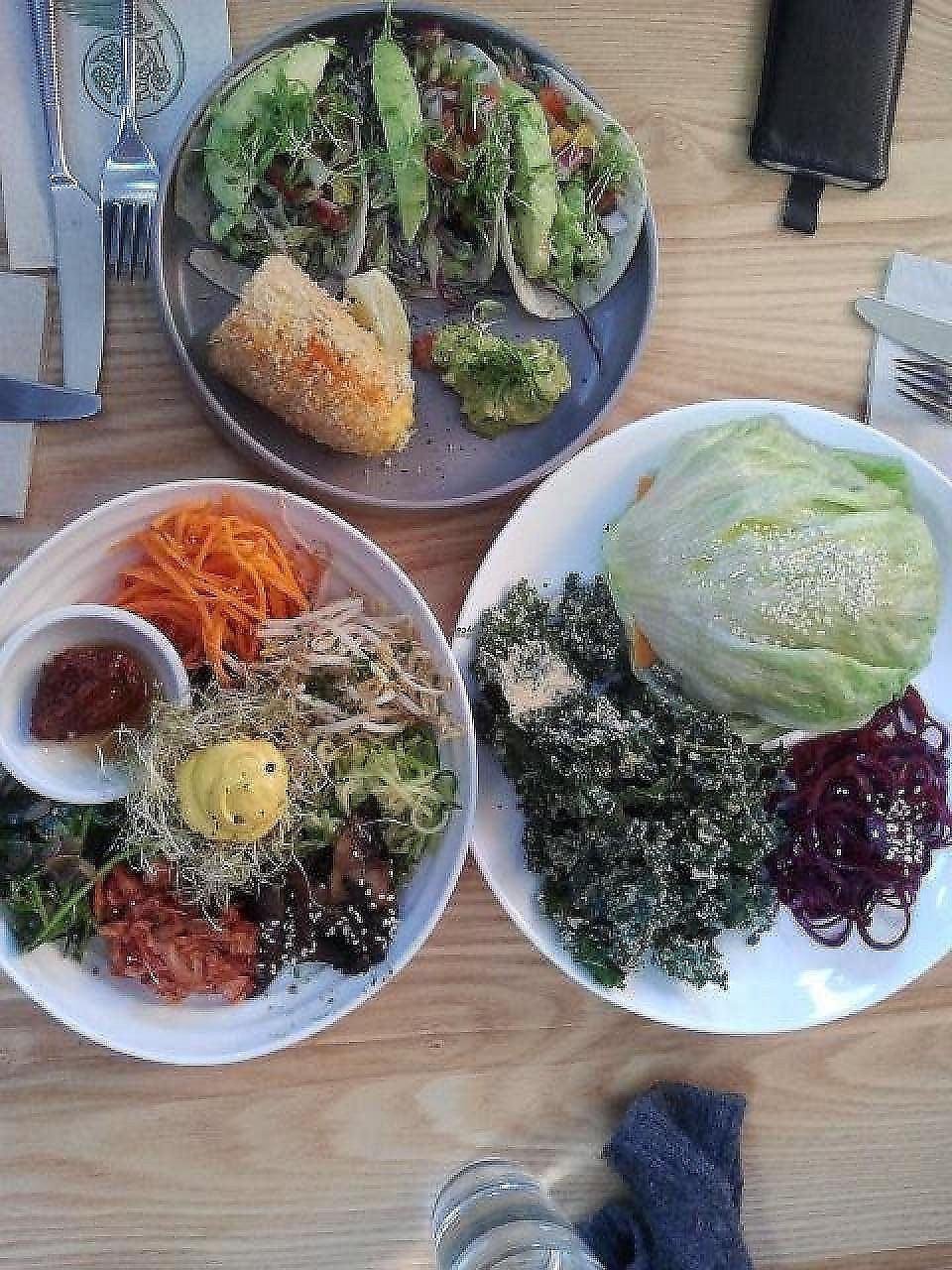 """Photo of Little Bird Organics - Ponsonby  by <a href=""""/members/profile/Plantpower"""">Plantpower</a> <br/>Selection of 3 lunches.  <br/> October 18, 2014  - <a href='/contact/abuse/image/44981/282863'>Report</a>"""