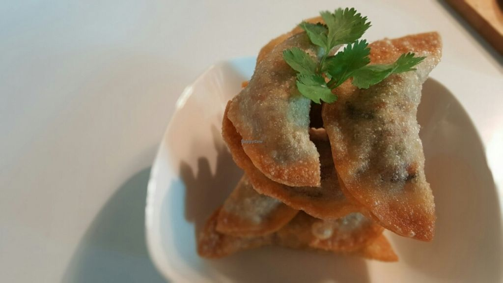 """Photo of Real Food  by <a href=""""/members/profile/JessieLim"""">JessieLim</a> <br/>Deep Fried Dumplings  <br/> May 10, 2016  - <a href='/contact/abuse/image/45103/148437'>Report</a>"""