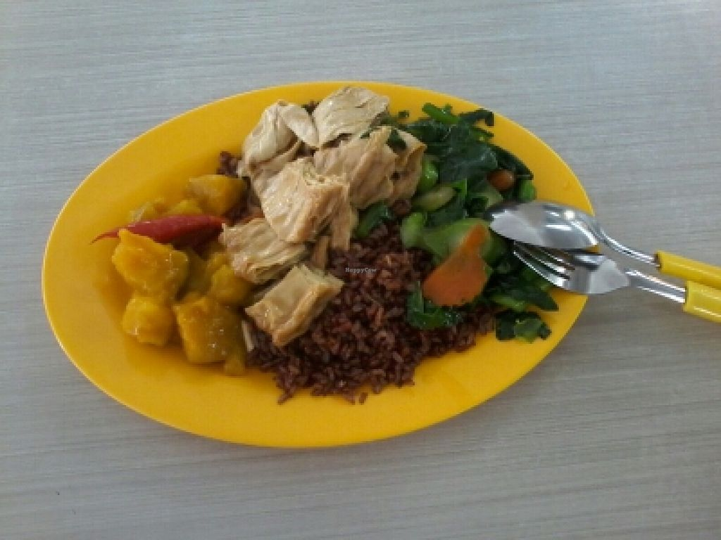 """Photo of Kwan Inn Vegetarian Stall - Geylang  by <a href=""""/members/profile/Smaster"""">Smaster</a> <br/>Mixed vege rice at affortable price <br/> November 30, 2015  - <a href='/contact/abuse/image/4519/126740'>Report</a>"""
