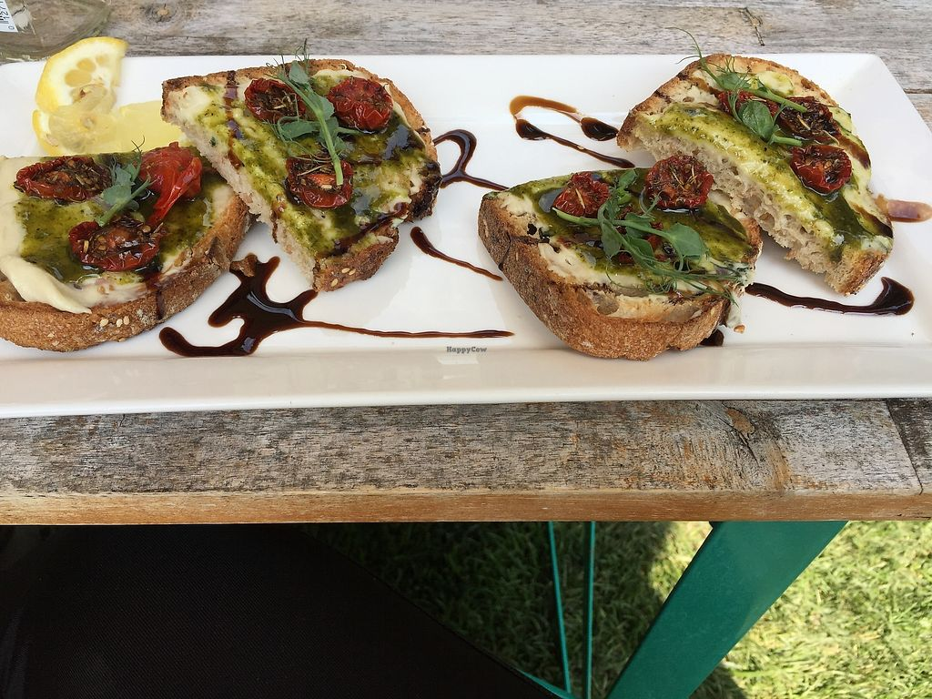 "Photo of Healthy Being Juicery  by <a href=""/members/profile/Swansonbuns"">Swansonbuns</a> <br/>Vegan caprese toast with cashew cheese <br/> August 5, 2017  - <a href='/contact/abuse/image/45200/289451'>Report</a>"