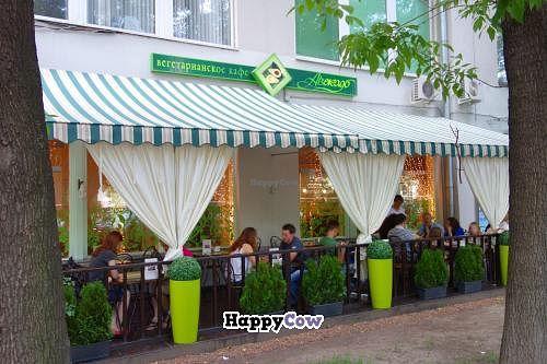 "Photo of Avocado Cafe - Chistoprudny  by <a href=""/members/profile/Gudrun"">Gudrun</a> <br/>Avocado Cafe - Chistoprudny <br/> July 23, 2013  - <a href='/contact/abuse/image/4521/51935'>Report</a>"
