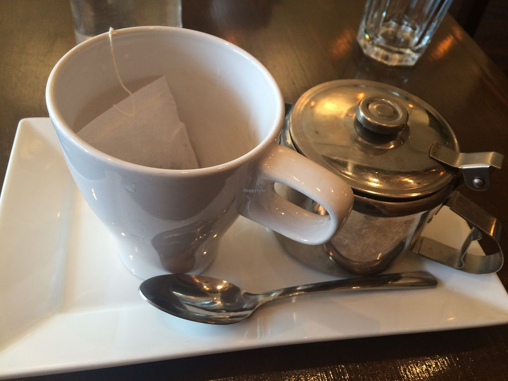 "Photo of Grasshopper Restaurant - College St  by <a href=""/members/profile/JazzyCow"">JazzyCow</a> <br/>Oolong Tea -- Gorgeous presentation :) I found this particularly cute!! <br/> November 21, 2015  - <a href='/contact/abuse/image/45254/125682'>Report</a>"