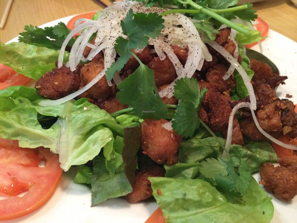 """Photo of Blossom Vegan Restaurant  by <a href=""""/members/profile/Adripaez"""">Adripaez</a> <br/>Soy 'beef' BBQ <br/> February 16, 2014  - <a href='/contact/abuse/image/45256/64362'>Report</a>"""