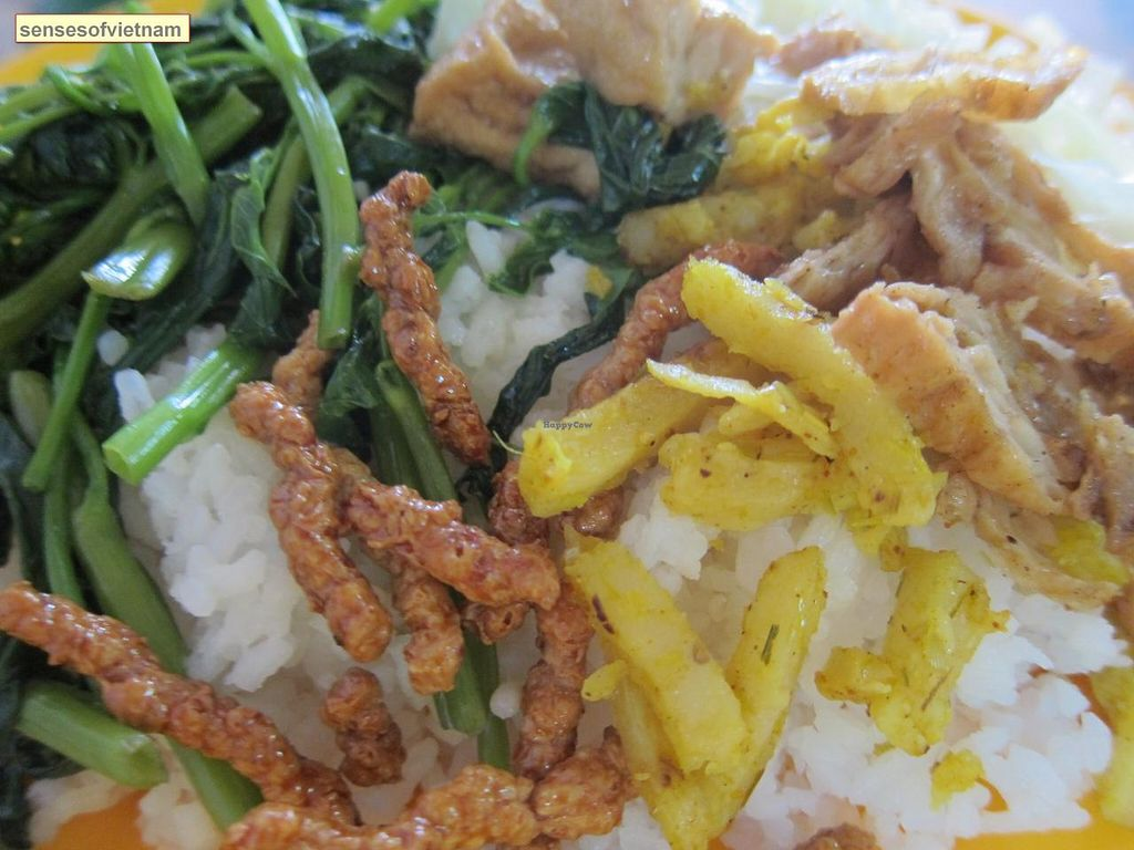 "Photo of CLOSED: Thien Tam 2  by <a href=""/members/profile/senseofvietnam"">senseofvietnam</a> <br/>come with vegetables, tofu, potato fritters <br/> March 14, 2014  - <a href='/contact/abuse/image/45282/65866'>Report</a>"