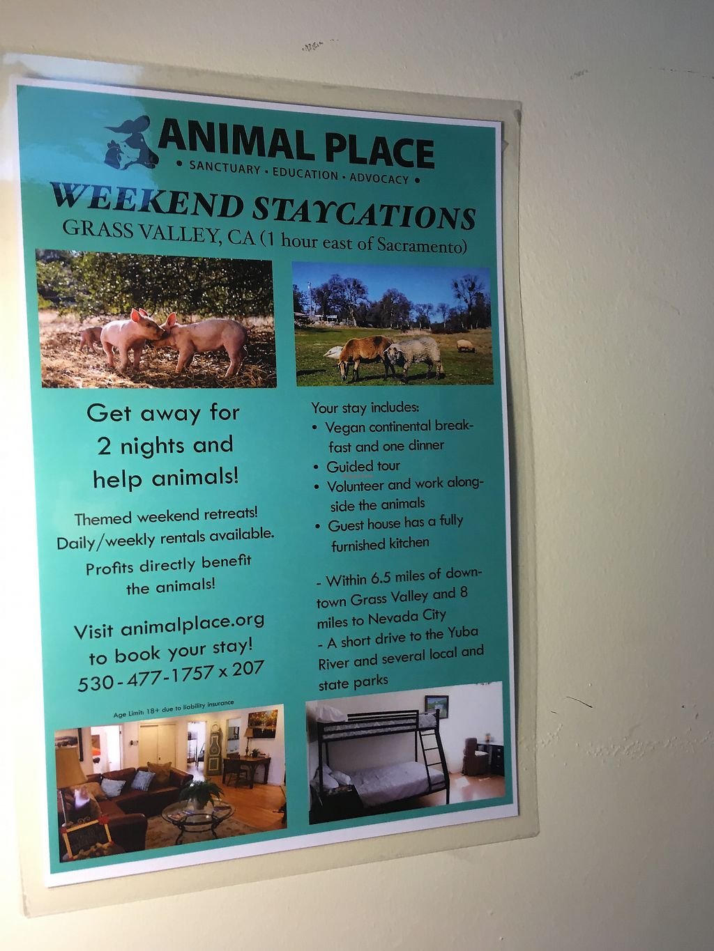 """Photo of Animal Place's Vegan Republic  by <a href=""""/members/profile/dvcucsc"""">dvcucsc</a> <br/>Even vegan vacation options <br/> February 6, 2018  - <a href='/contact/abuse/image/45427/355514'>Report</a>"""