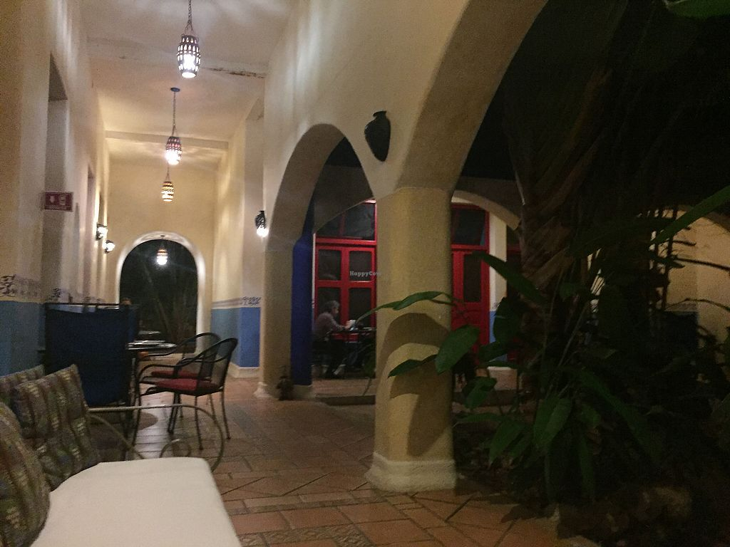 """Photo of Lo Que Hay Cafe  by <a href=""""/members/profile/SinzianaK"""">SinzianaK</a> <br/>The courtyard  <br/> December 17, 2017  - <a href='/contact/abuse/image/45431/336500'>Report</a>"""