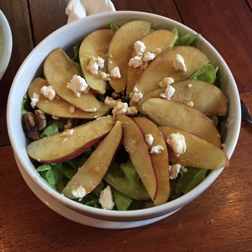 """Photo of Art Cafe  by <a href=""""/members/profile/HelleBorgErlang"""">HelleBorgErlang</a> <br/>Apple Orchard Salad <br/> May 25, 2016  - <a href='/contact/abuse/image/45611/150811'>Report</a>"""